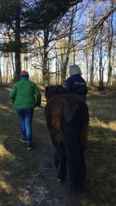 En elev, en häst och en pedagog på promenad i en skog, där de samtalar
